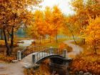 Осенняя сказка