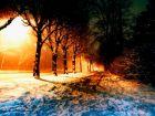 Идёт четвёртая ночь зимы