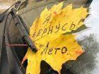 Осенние стихи