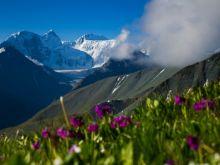 Белуха: Хождение по трем тропам