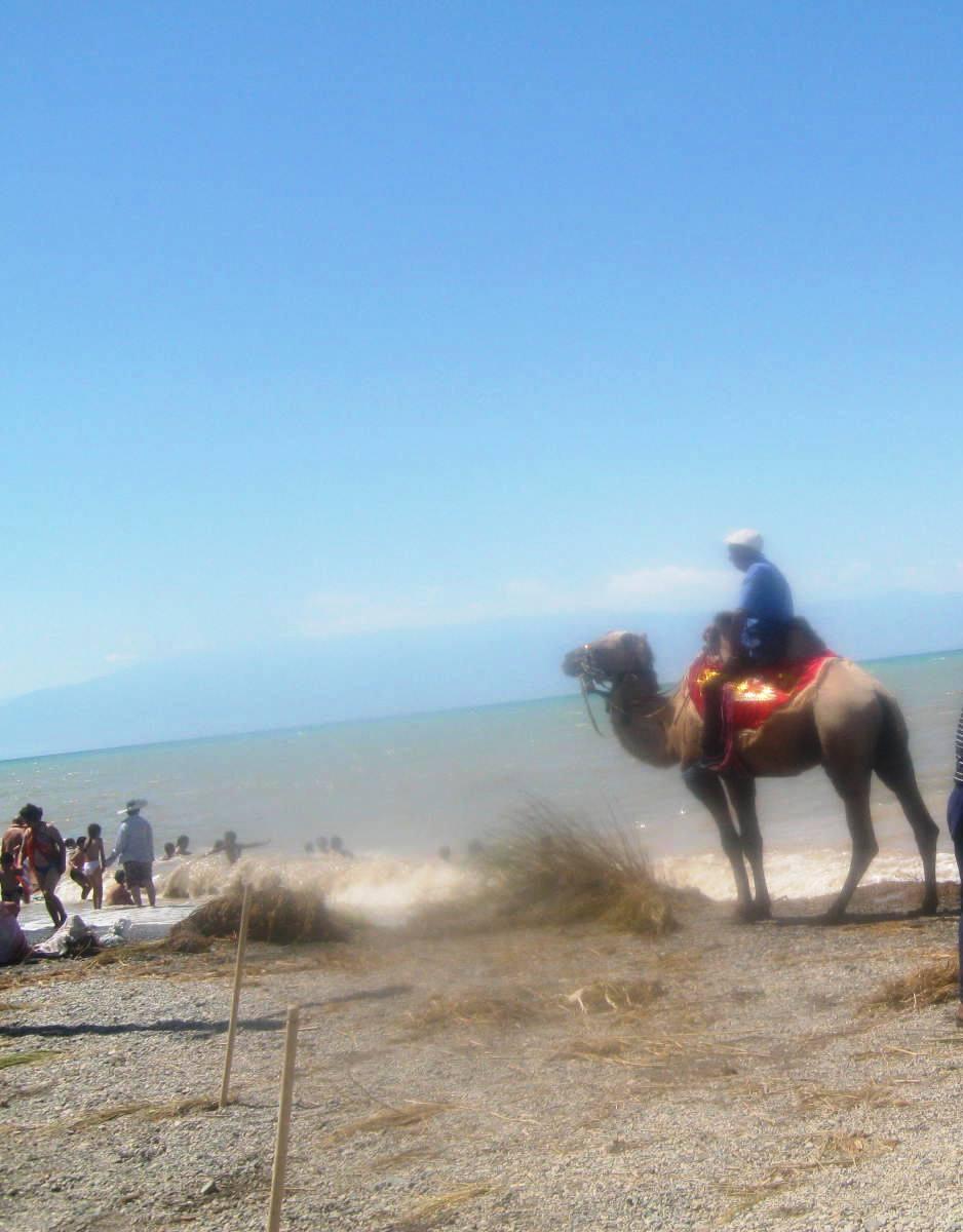 Местное море, шалун Алаколь