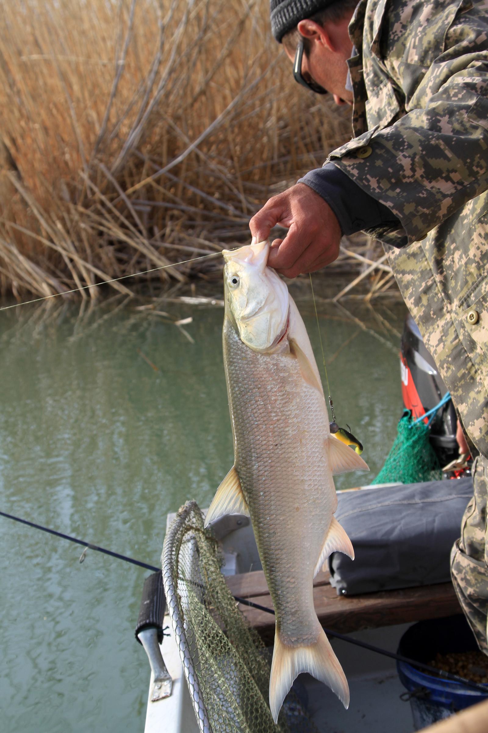 база отдыха для рыбалки на балхаше