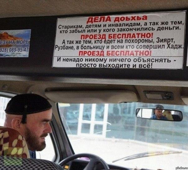 Мульт об автобусах