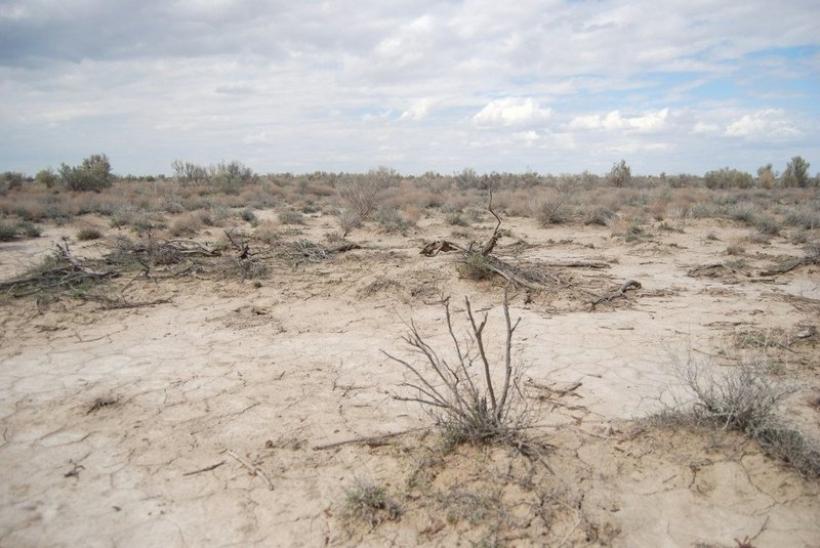 Пустыня Сарыесик-Атрау