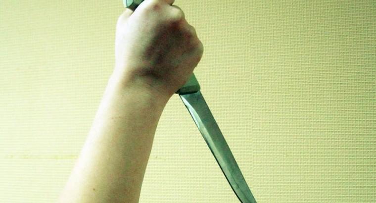 11 ножевых ударов в области сердца