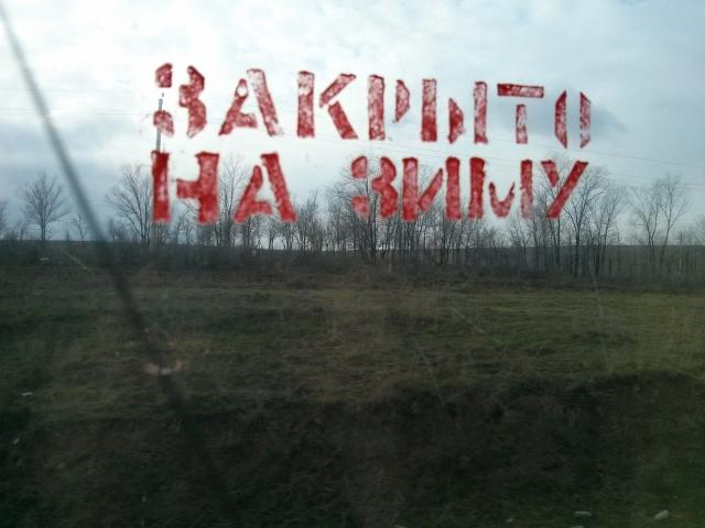 Эми Грация, или сказ о том, как basilio в Беларусь эмигрировал.