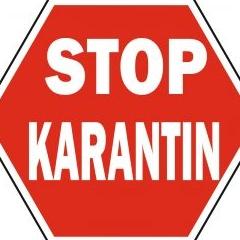 Karantin