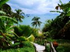 Собираетесь в Тайланд? Полезные советы от Arrow Hotels and Resorts