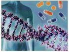 Эволюция - результат деградации молекулярных машин?