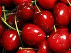 Кнопки со вкусом вишни