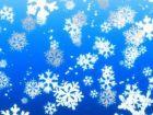 И пришел снег...