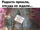 Похоже  , я  -  ваша радость)