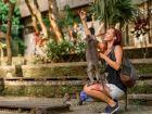 Легенды и мифы острова Бали от Arrow Hotels and Resorts