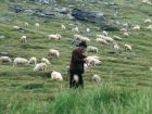 Несказка о прынце и пастушке