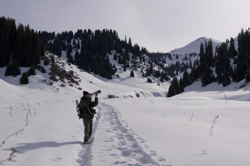 Снежный Кимасар