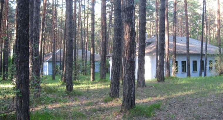 Пионерский лагерь