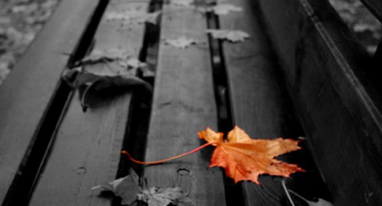 Вакуумная осень