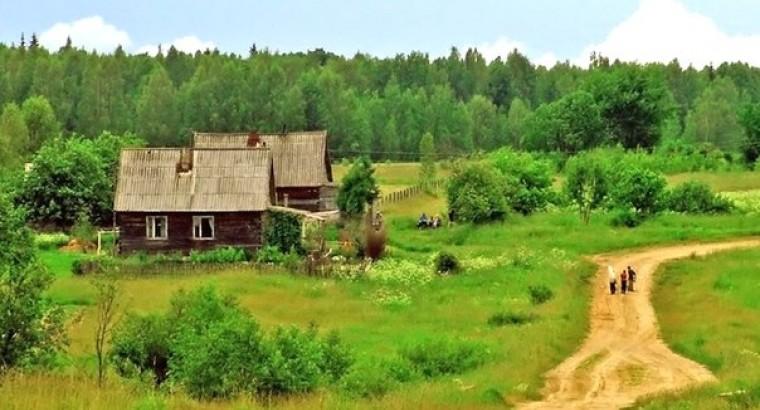 Деревенские истории. Знахарь