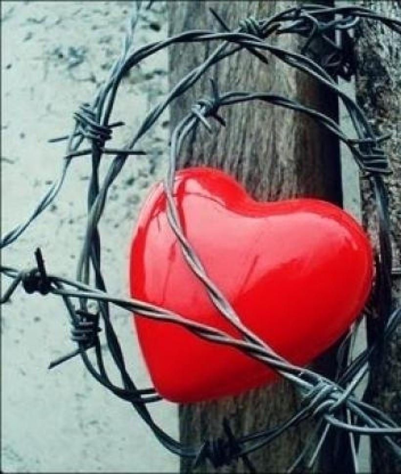 В зоне любви