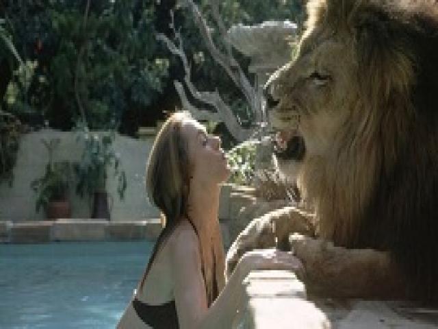 Она жила со львом под одной крышей. Но не всё было так сказочно, как на фотографиях.