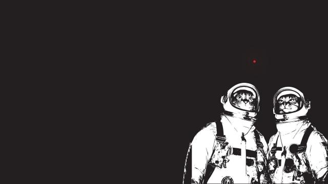 Айтыс бактерио-космический: голосовалка