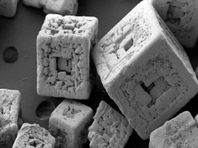 Микромир через микроскоп
